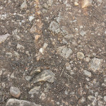 Non-tiling rocky ground Texture synth Texture synth sample02a 150x150
